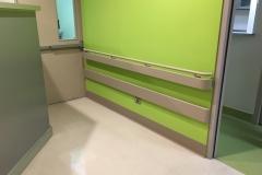 Hospital México