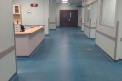 Hospital de la Anexion de Nicoya